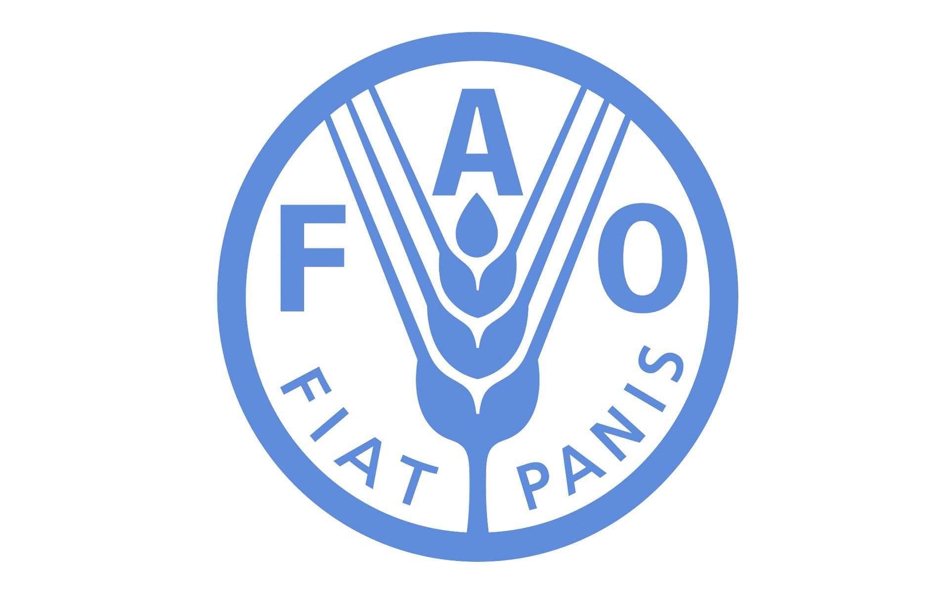 Вакансия в ФАО: Специалист по корпоративным коммуникациям