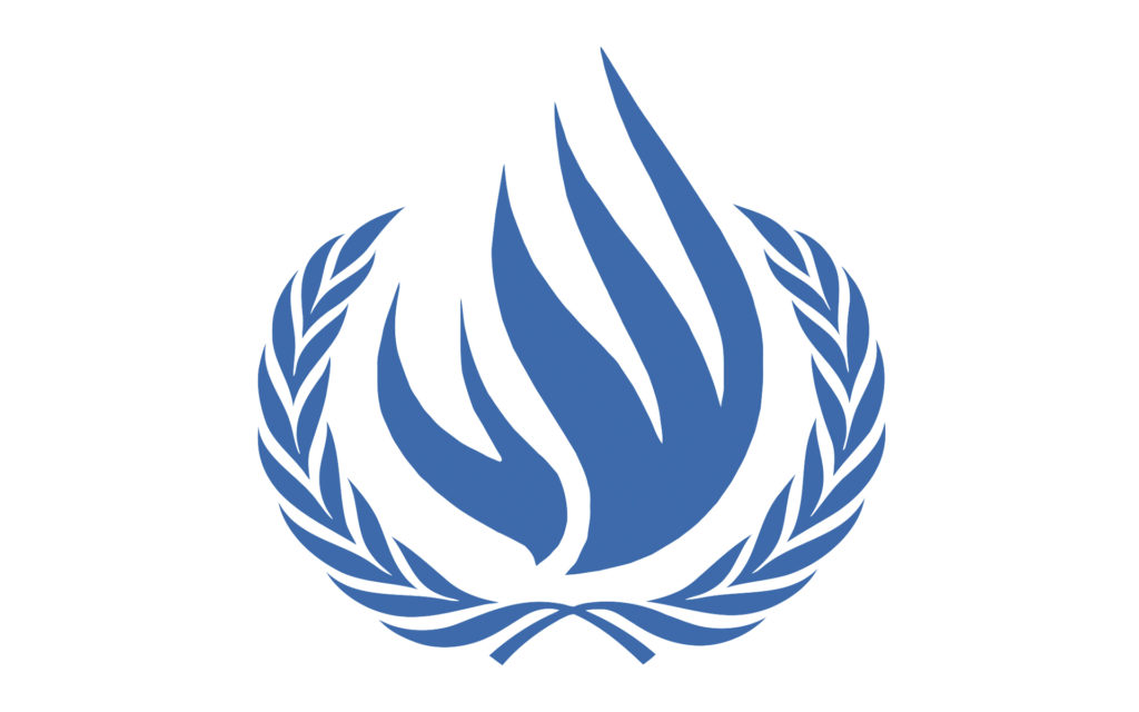 Помощник (волонтер) сотрудника по правам человека в   Управлении Верховного комиссара по правам человека